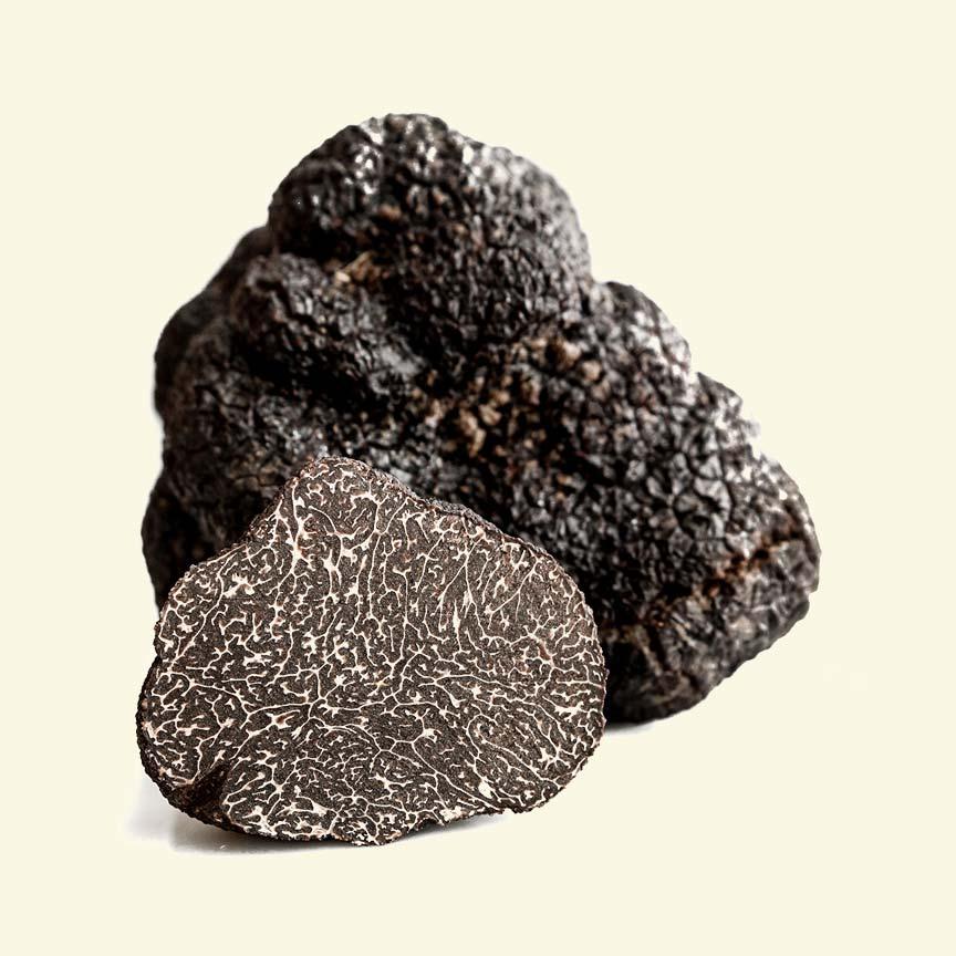 Black Truffle Bangkok